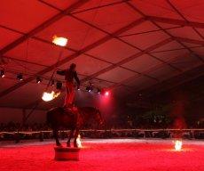 Festi Cheval 2012